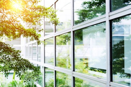 Office building with a glass wall, trees are reflected in the glass and the sun shines through the leaves.